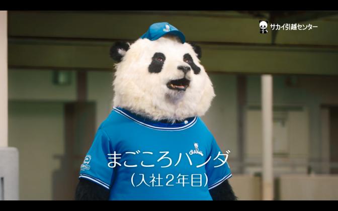 サカイ引越しセンター まごころパンダ Season2 第3話「ライバル、襲来」篇 TVCM